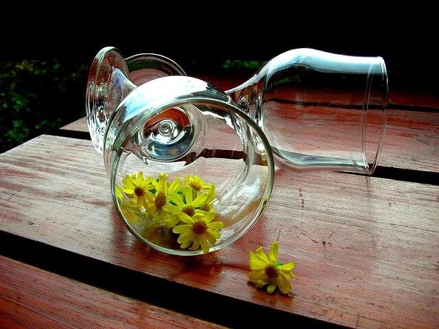 Kwiaty rumianku leżą w przewróconym kieliszku