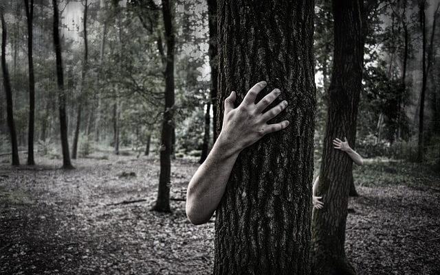 Drzewa i otaczające je ręce
