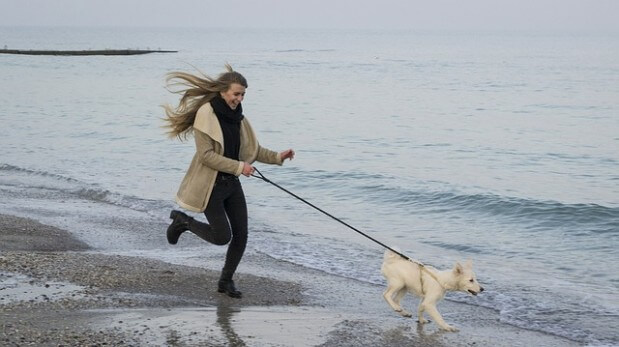 bieg-kobieta-pies-woda