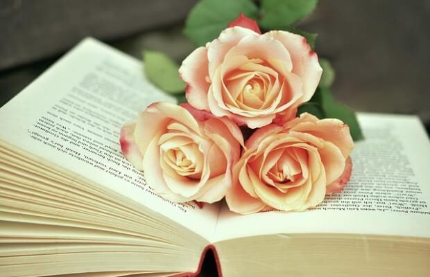 Róże leżą na książce