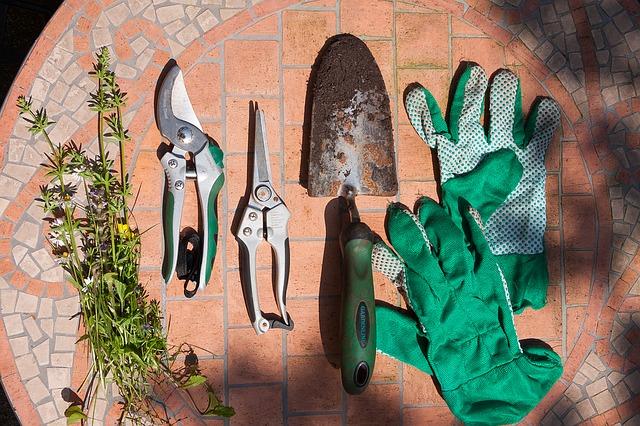 Szpadel ogrodowy wśród innych narzędzi
